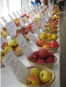 Regional apple varieties