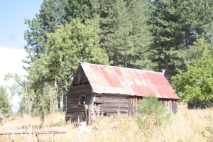 An abandoned 19th century orchard building